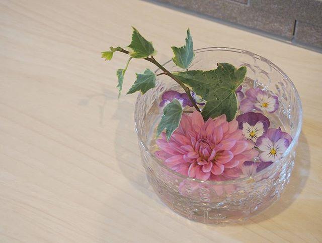 いろいろな生花で楽しむ浮き花3