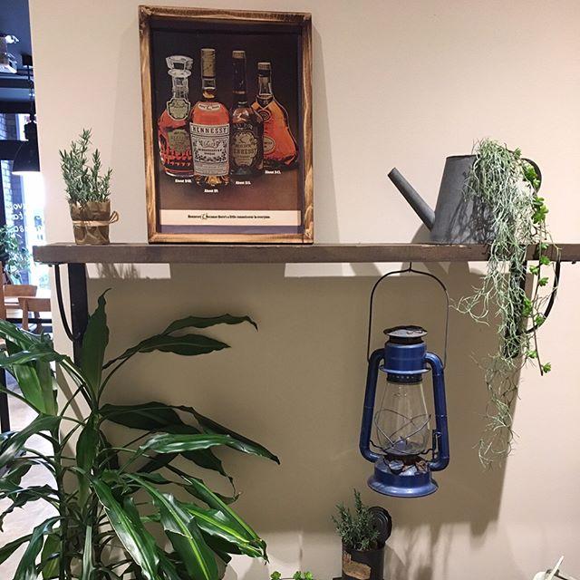 植物を飾ってトイレをナチュラルにレイアウト