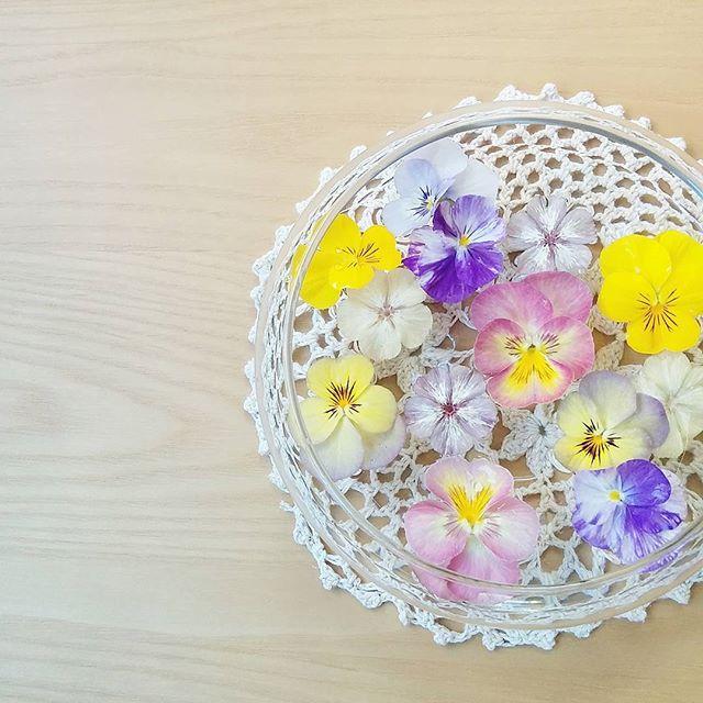 いろいろな生花で楽しむ浮き花2