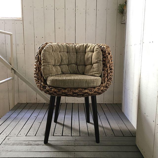 ウォーターヒヤシンスの家具