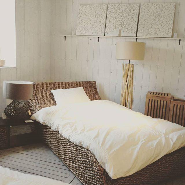 ウォーターヒヤシンスの家具5