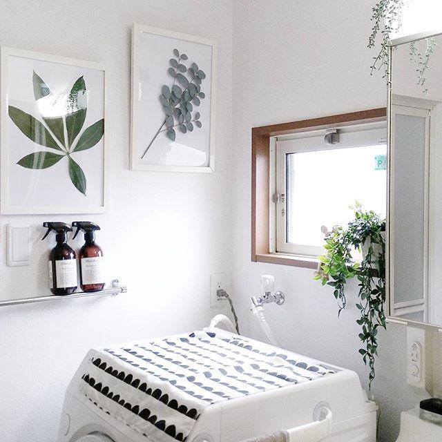 グリーンの溢れる清潔感を感じる洗面所