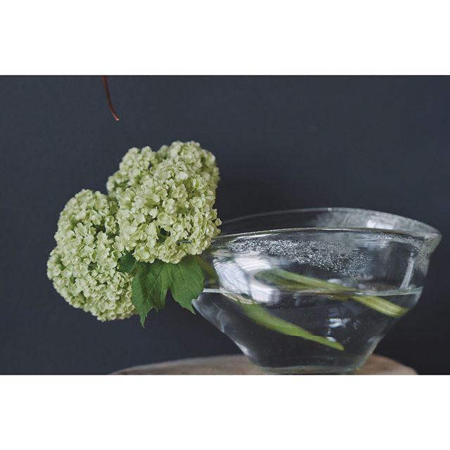 グリーンで楽しむ浮き花3