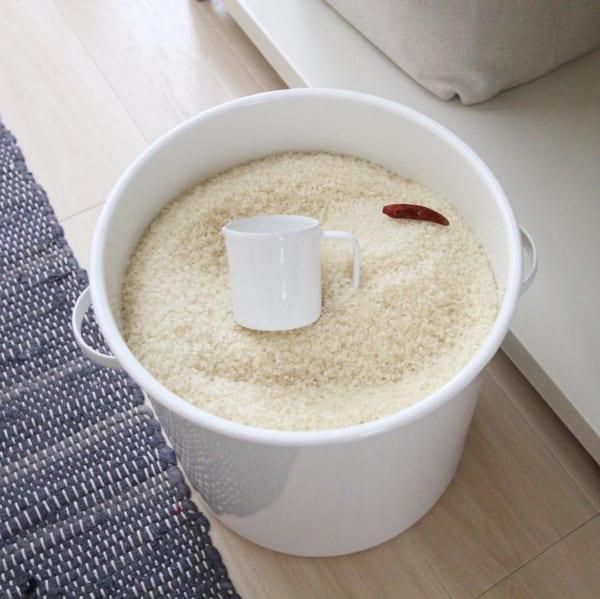 お米収納4