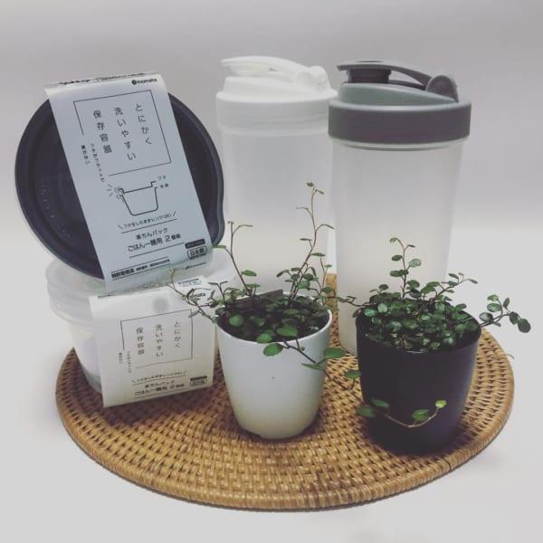 洗いやすさを追求した衛生的な保存容器