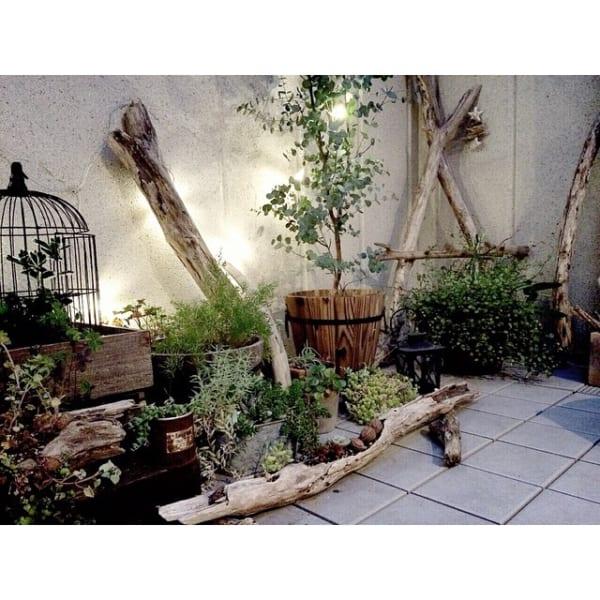 流木や古道具でおしゃれなベランダガーデンを
