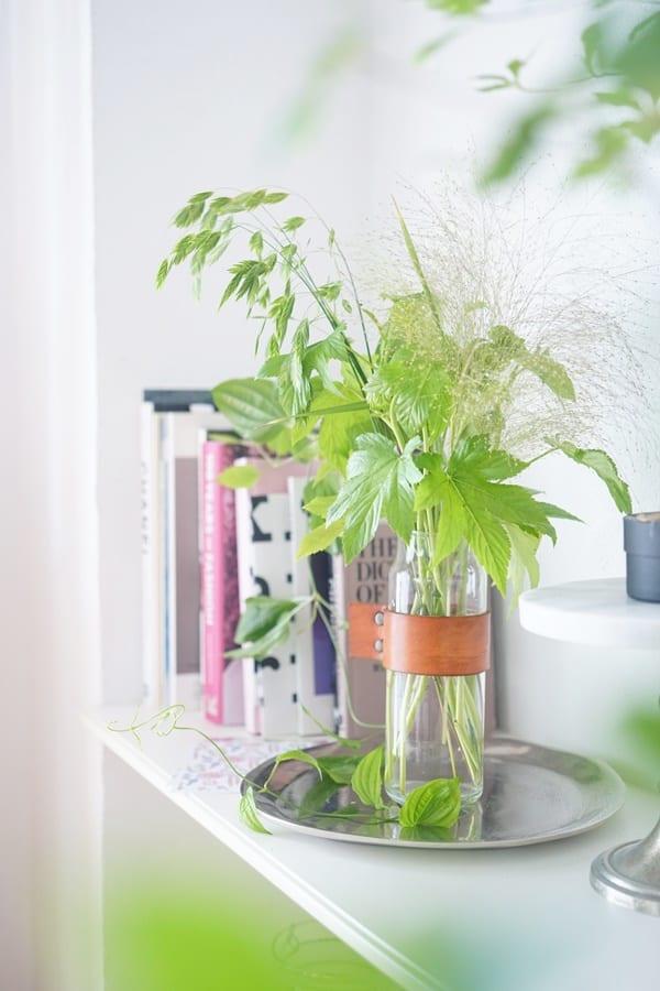 グリーンの葉ものを集めて、涼し気なインテリアに!2