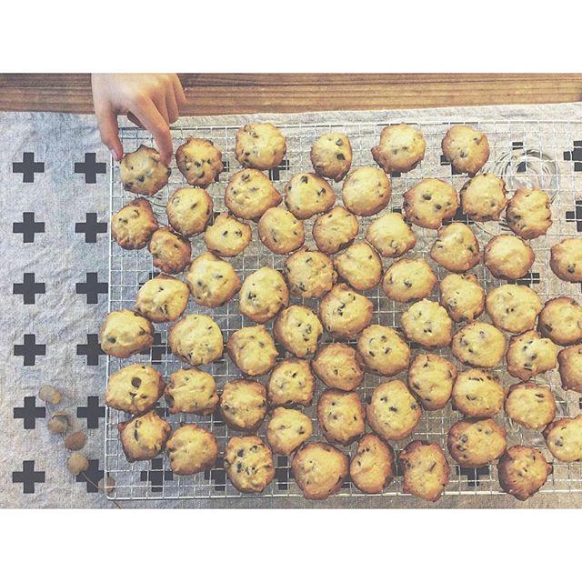 チョコクッキーの人気レシピ4