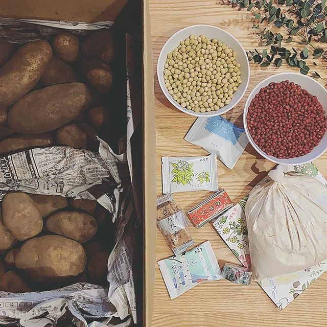 野菜 保存方法7