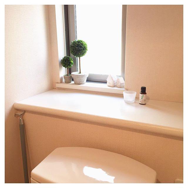 2DKの洗面所・トイレ収納8