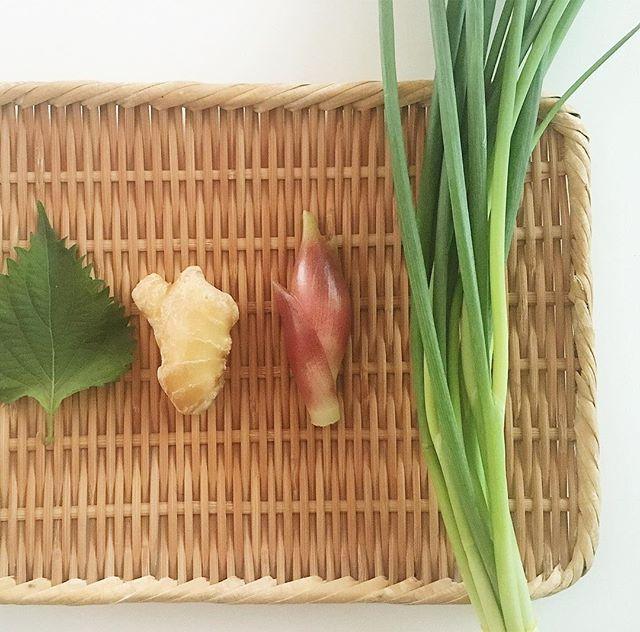 野菜 保存方法8
