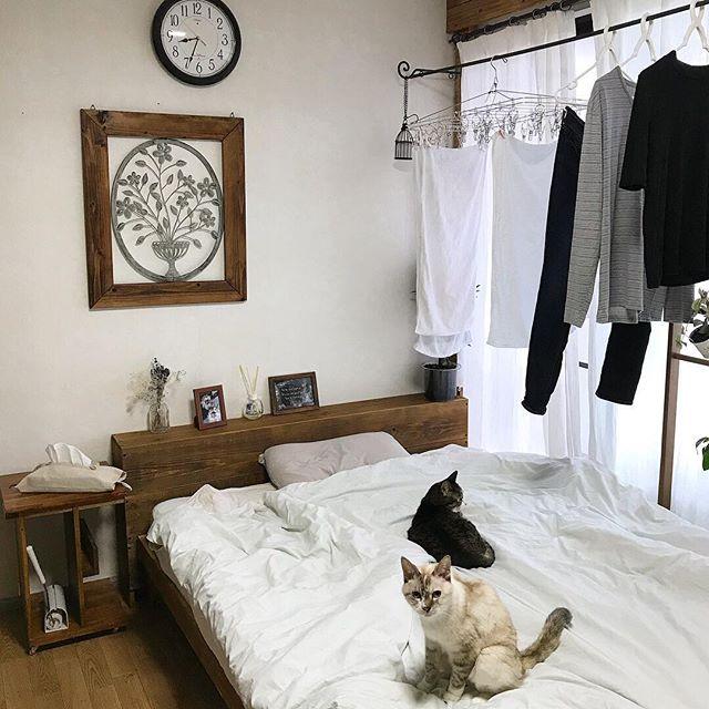 部屋干し対策3
