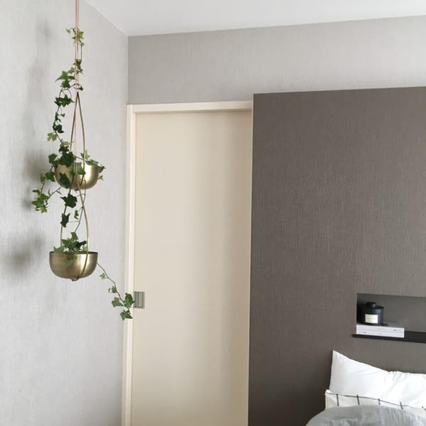 観葉植物7
