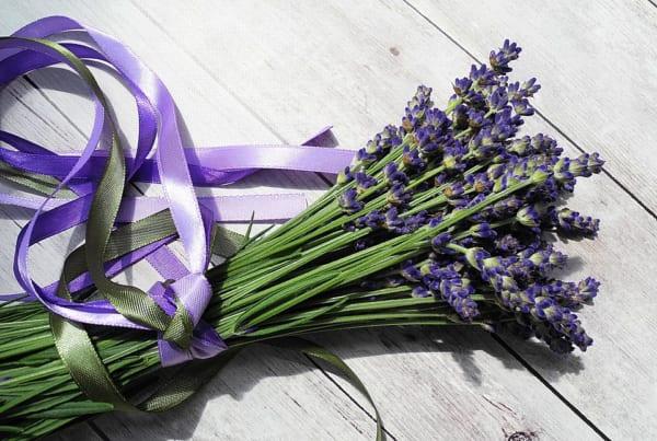 恋愛系のラベンダーの花言葉