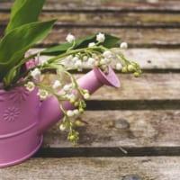 【すずらんの花言葉】実は毒を持つ花に込められた意味を解説