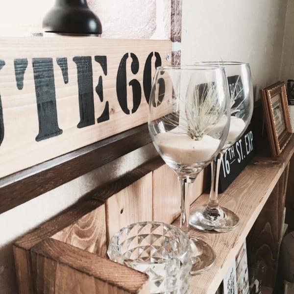 ワイングラス エアプランツ