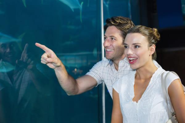 水族館デートで盛り上がる会話術