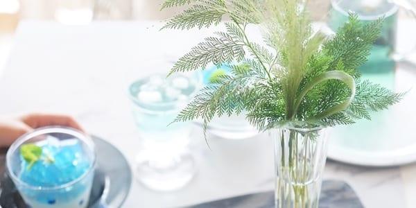 【連載】簡単オシャレな空き瓶リメイク♪夏らしい葉っぱを飾るアイデア