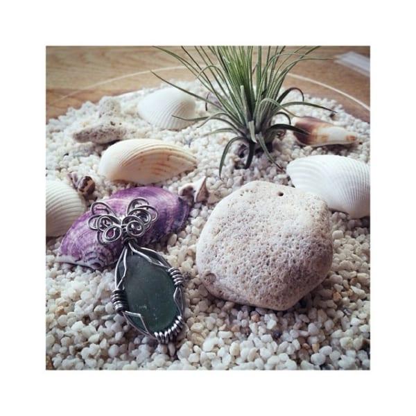 貝殻をディスプレイ6