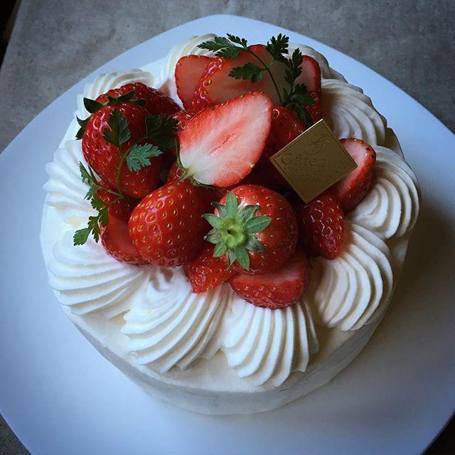 人気スイーツレシピ①いちごのケーキ