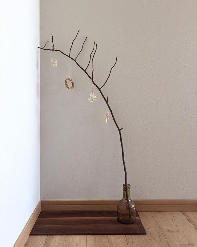 枝もの植物10
