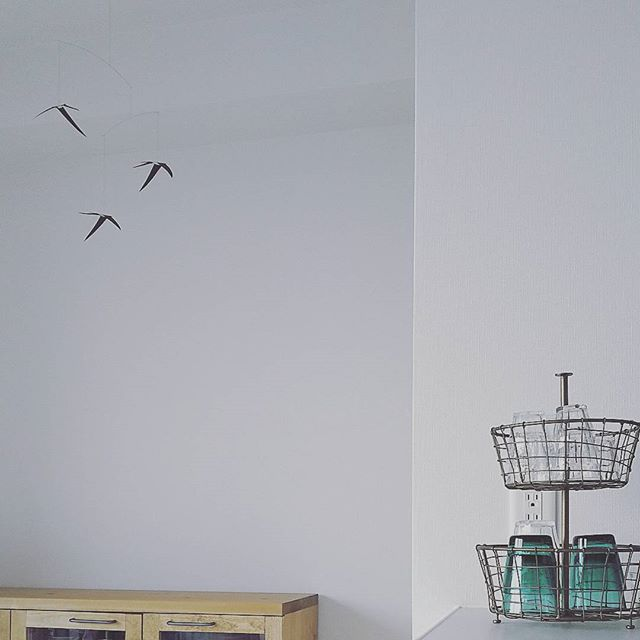 Flying Swallows(飛び回るつばめたち)