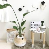 一人暮らしにおすすめ♡狭カッコいい部屋を作る便利でおしゃれなアイテム7つ