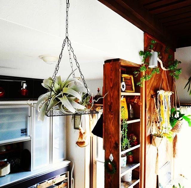 天井から吊り収納2