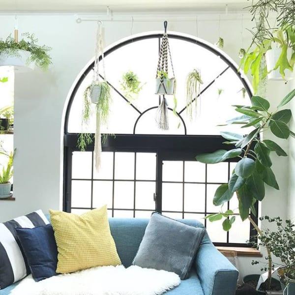 開放感のある窓を贅沢に!