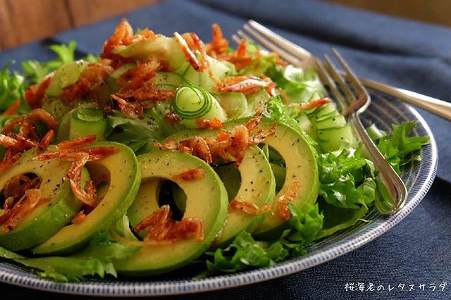桜海老のレタスサラダ
