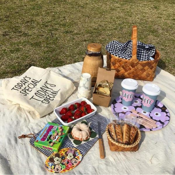 ピクニック お皿2