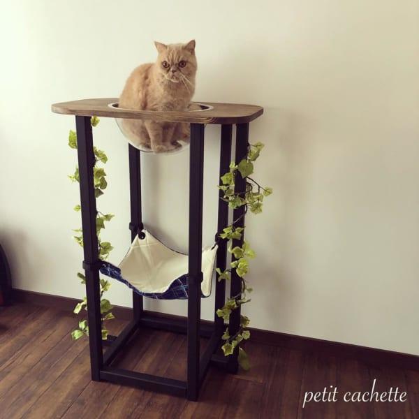 猫 グッズ2