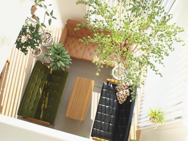 グリーンいっぱいの癒しあふれるお部屋3