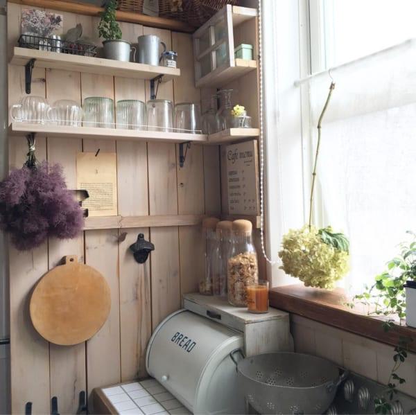 キッチンに植物を取り入れて日々の料理を楽しく