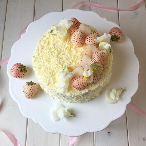 チョコレートケーキ レシピ13