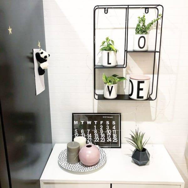 シェルフでランダムに植物を配置