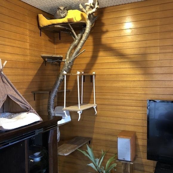 キャットウォーク DIY 木材2