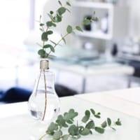 簡単DIYでおしゃれに飾れる!「電球」をインテリアに取り入れるアイデア♡