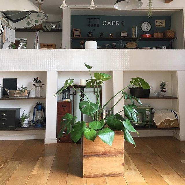 キッチン 見せる収納4