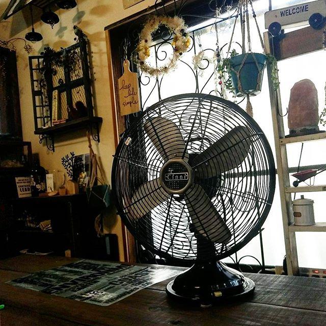 レトロ扇風機6