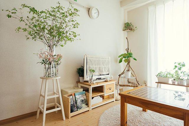 小さめの家具とグリーンをコーディネート