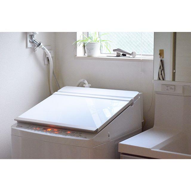 洗濯槽 掃除の仕方4