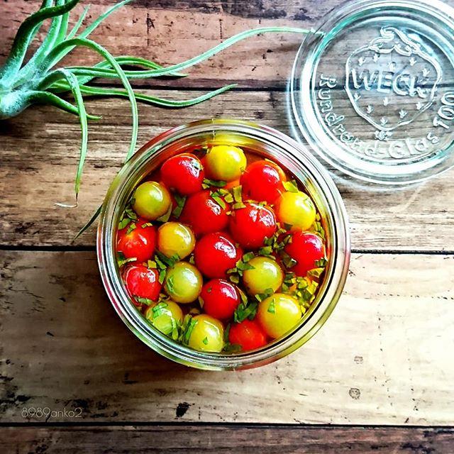 色とりどりで可愛い!トマトのマリネ