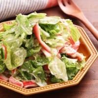 レタスの人気レシピ特集!大量消費にもおすすめの簡単料理をご紹介します♪