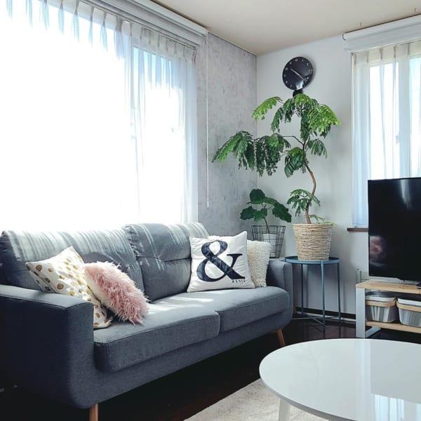ソファも一人暮らしで買うべき家具