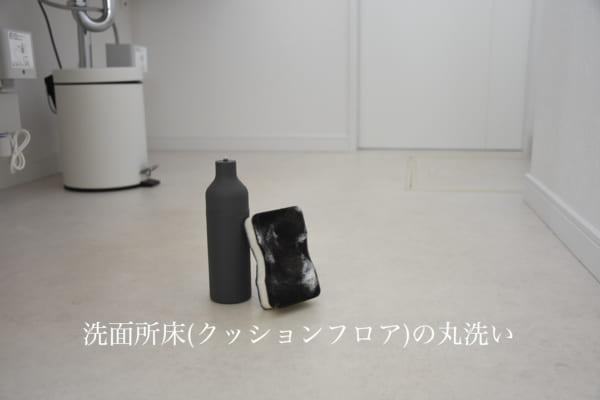 洗面所床の掃除
