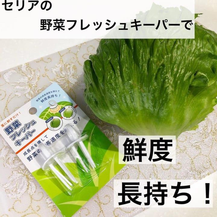 野菜フレッシュキーパー