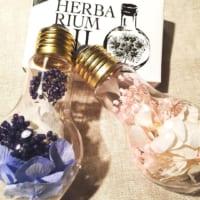 【ダイソーetc.】でお花のある生活を楽しもう!ハーバリウム・インテリア雑貨