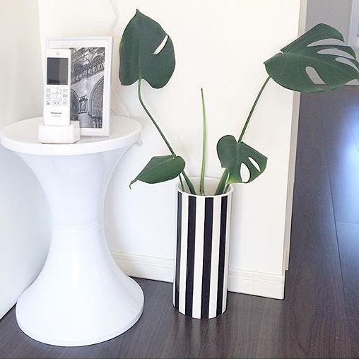 寝室インテリア 観葉植物6
