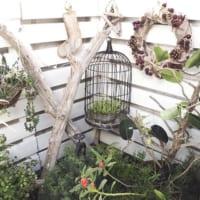 バードゲージで楽しむインテリア!鳥かごでワンランクアップの空間